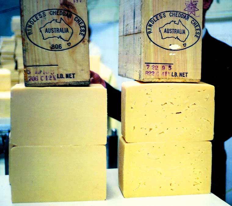 Export quality cheese from the Cheese Factory