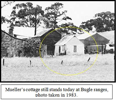 Mueller's cottage in 1983